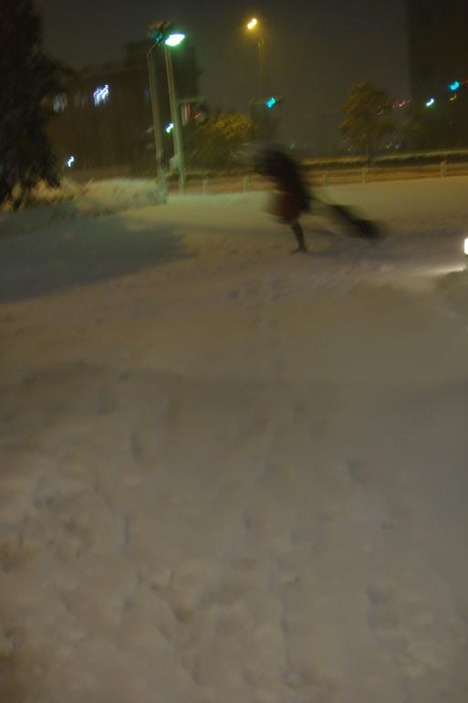 横浜の雪_e0226943_21325412.jpg