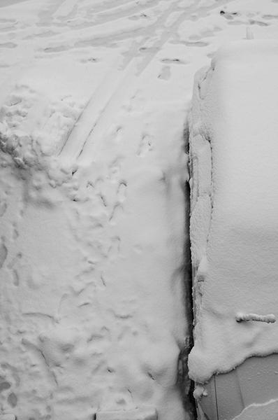 また雪の東京_a0003650_18515252.jpg