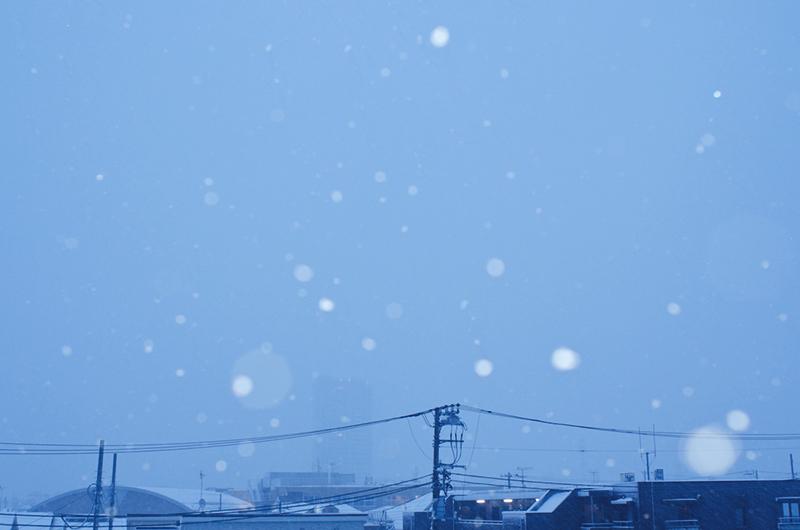 また雪の東京_a0003650_18522166.jpg