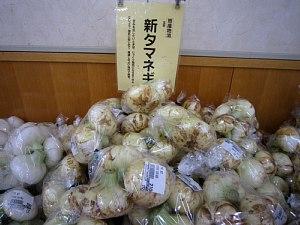 あいちの伝統野菜_c0141652_15234877.jpg