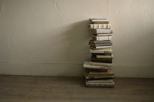 「本と椅子さえあれば ―未 草 暮しの内と外―」作品のご紹介1。_e0060555_1504076.jpg