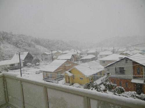 '14,2,14(金)また雪だよ~!羽生君すご~い!_f0060461_19121877.jpg