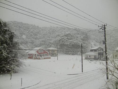 '14,2,14(金)また雪だよ~!羽生君すご~い!_f0060461_19123631.jpg