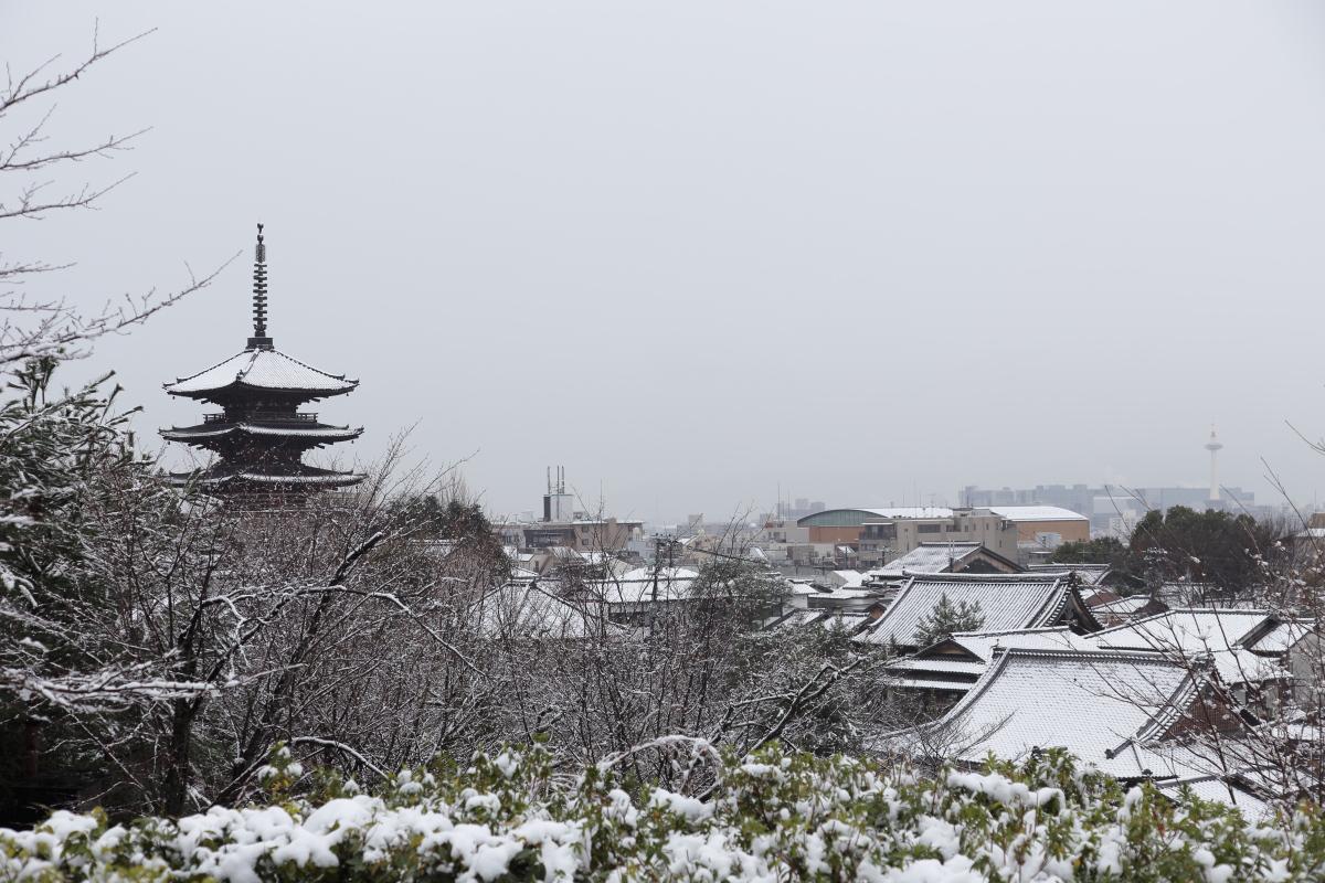 雪景色 2014 <東山>                        _f0021869_23213668.jpg