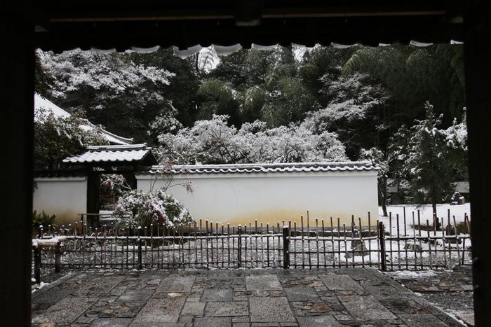 雪景色 2014 <東山>                        _f0021869_23231199.jpg