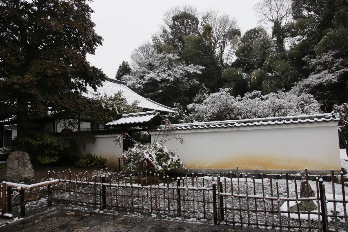 雪景色 2014 <東山>                        _f0021869_2323788.jpg
