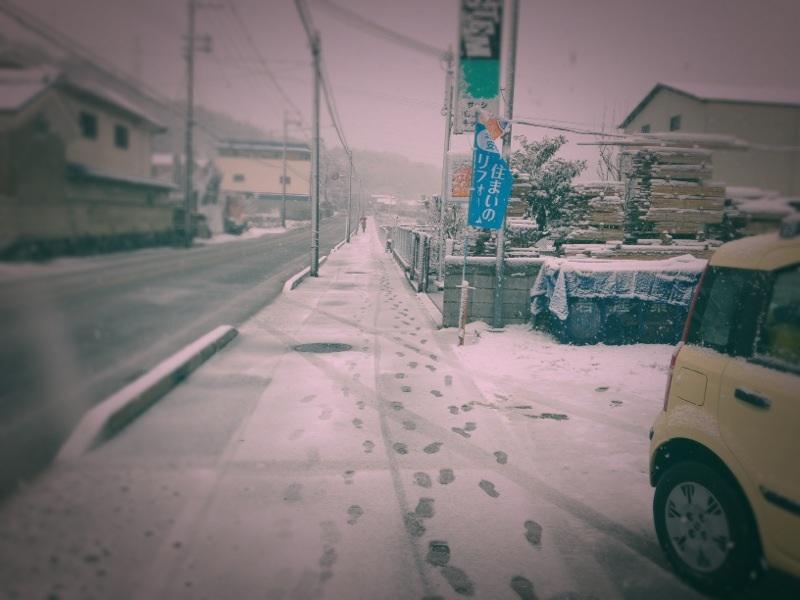 雪。_d0024685_21264399.jpg