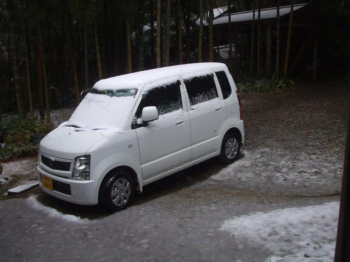 雪_d0141987_1031311.jpg