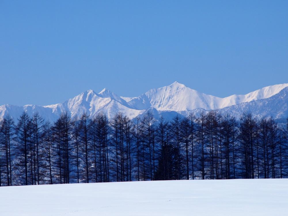 """快晴の雪原越しに望む""""カムイエクウチカウシ山(日高山脈)""""_f0276498_12253161.jpg"""