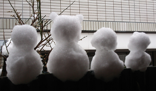 外の雪と羽生@ソチくんが気になる目覚め_a0057402_09105840.png