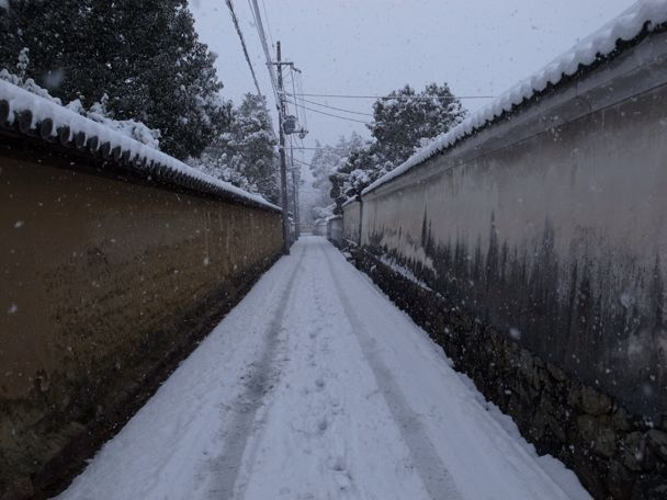 深夜入り 奈良ホテル_d0147406_15262844.jpg