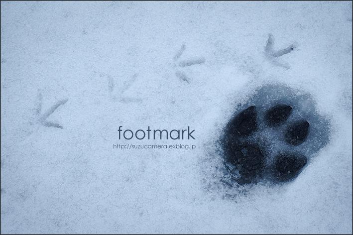 雪のうえに_f0100215_22400434.jpg