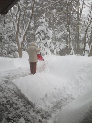 ドカ雪です。_e0192217_1514472.jpg