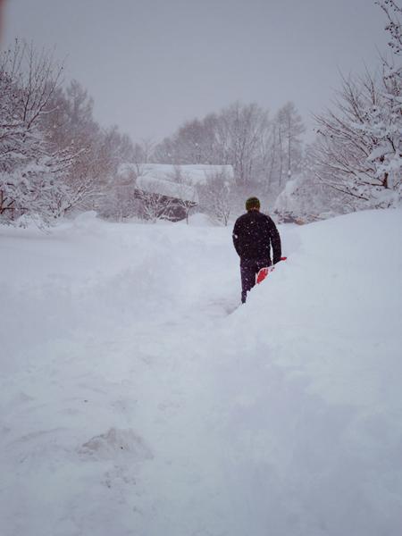 大雪の日のスウィートグラス_b0174425_19181652.jpg