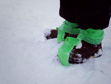 大雪の日のスウィートグラス_b0174425_19192874.jpg