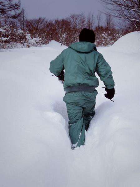 大雪の日のスウィートグラス_b0174425_19195287.jpg