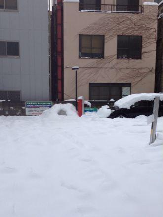 ここは雪国?!_b0203925_13205981.jpg