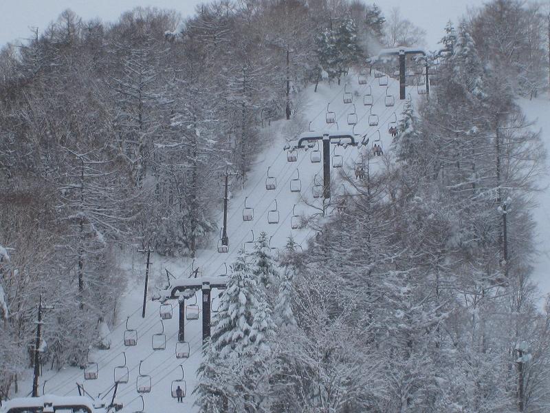 6年ぶりのスキー場全面クローズでしたが・・・_a0057828_15452775.jpg
