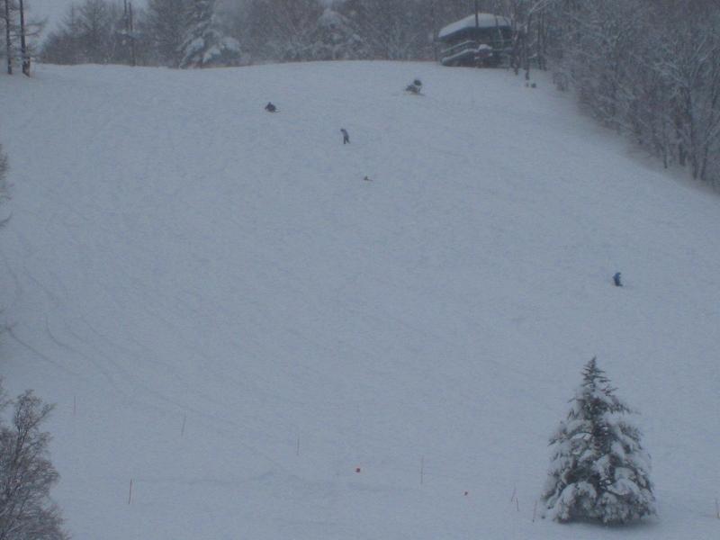 6年ぶりのスキー場全面クローズでしたが・・・_a0057828_15454634.jpg
