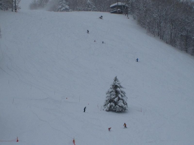 6年ぶりのスキー場全面クローズでしたが・・・_a0057828_15461758.jpg