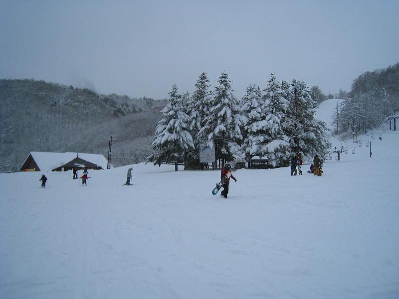 6年ぶりのスキー場全面クローズでしたが・・・_a0057828_1546479.jpg