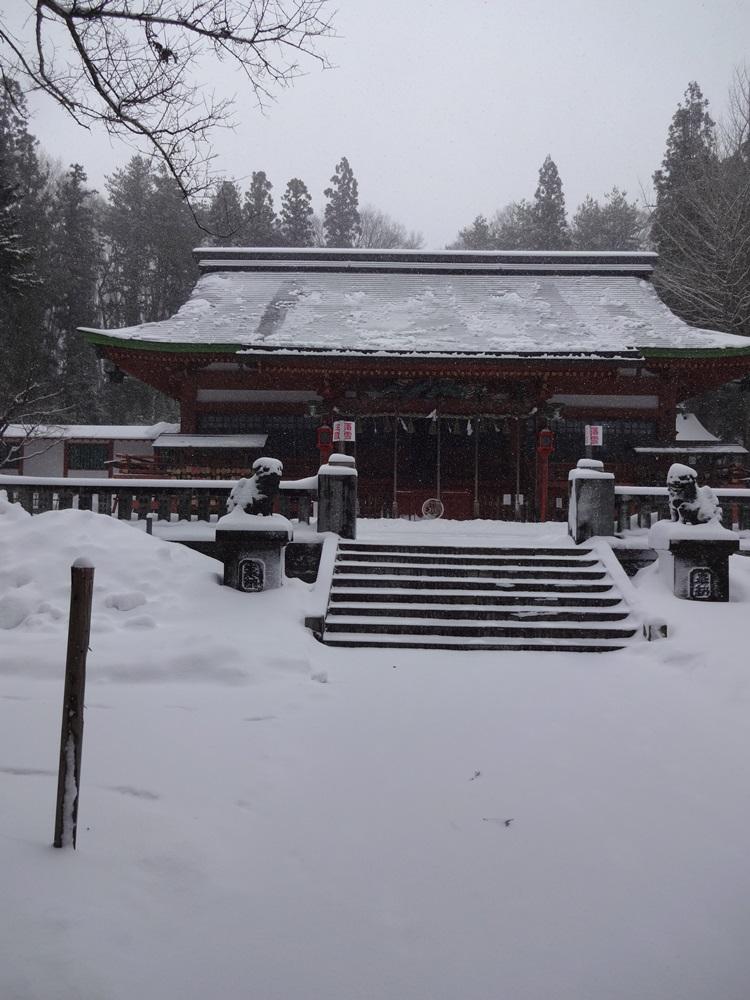 大雪警報発令_c0111229_18455295.jpg