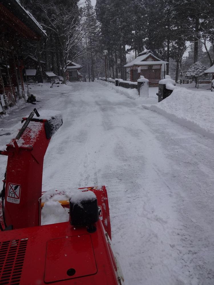 大雪警報発令_c0111229_18462485.jpg