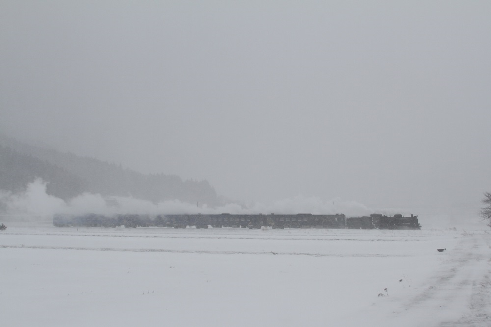 大雪警報発令_c0111229_18471911.jpg