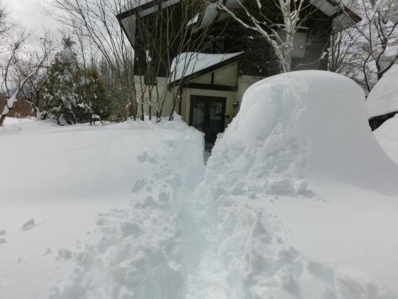 大雪です!_f0019247_1326198.jpg