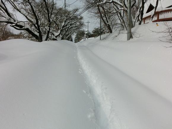 大雪です!_f0019247_13302073.jpg