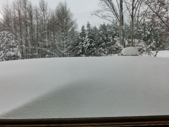 大雪です!_f0019247_1393381.jpg