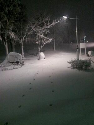 また雪!_a0091157_20174564.jpg
