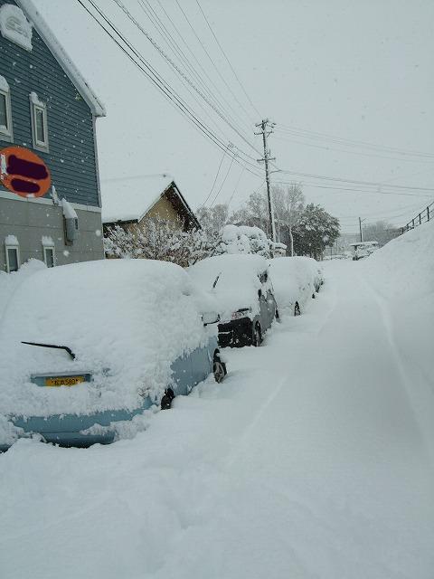 雪を楽しむ_b0117564_1933577.jpg
