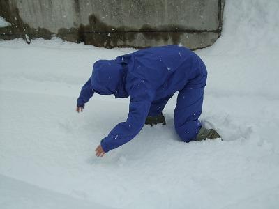 雪を楽しむ_b0117564_195592.jpg