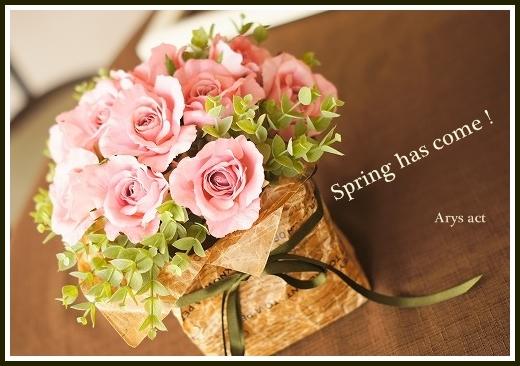 春のローズ_c0243369_18221249.jpg