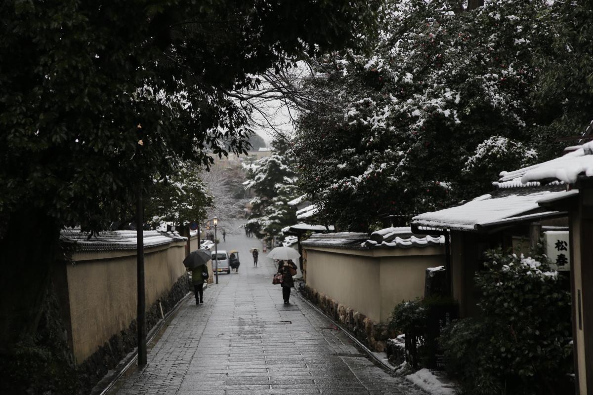 雪景色 2014 <東山>                        _f0021869_23434587.jpg