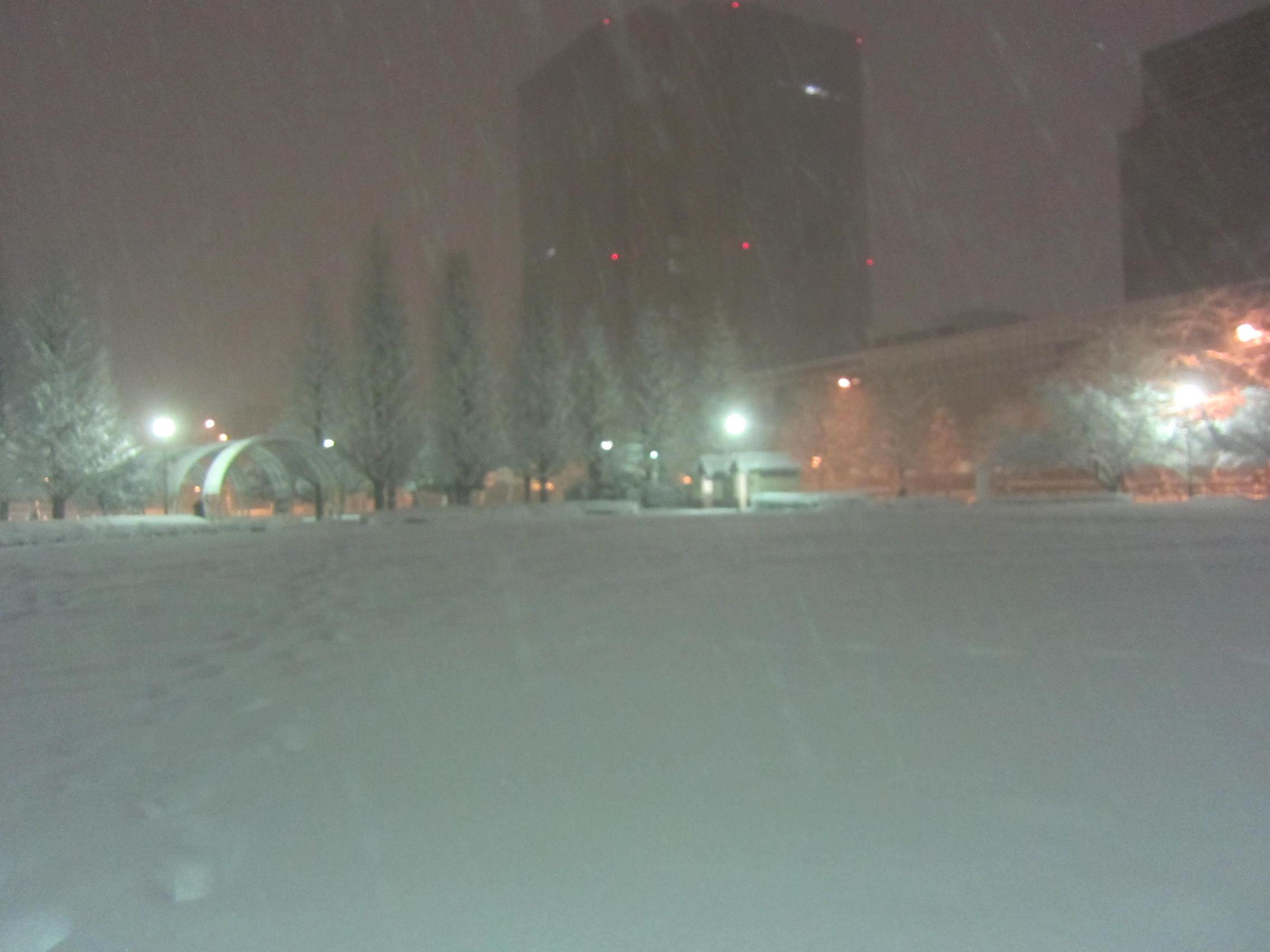 またまた大雪_b0219170_10394725.jpg