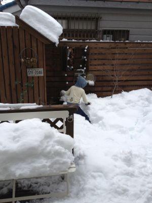 雪、雪、雪_f0173771_23594919.jpg