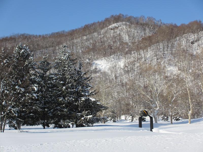 冬のアルテピアッツアびばい(その1)_b0068572_23193027.jpg