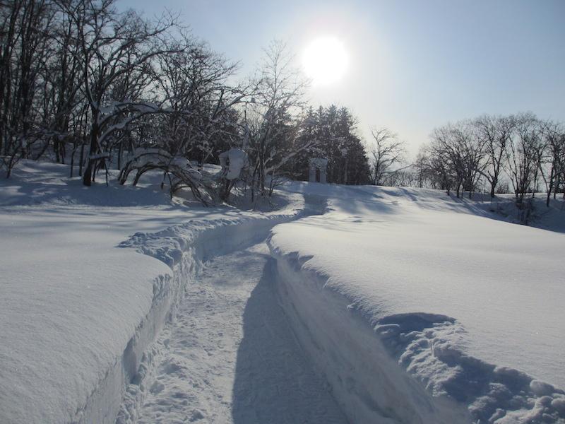 冬のアルテピアッツアびばい(その1)_b0068572_23193632.jpg