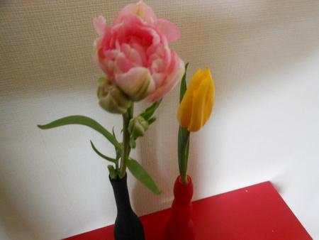 春を感じる[おまけ」_b0186183_15251051.jpg