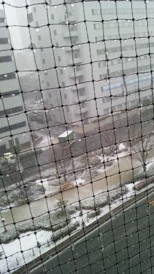 大雪_c0207489_02069.jpg