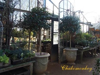 憧れのPetersham Nurseries_f0238789_19383930.jpg
