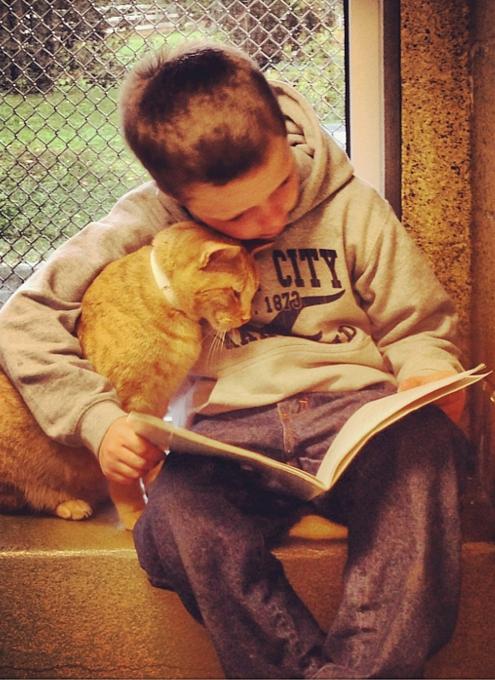 猫ちゃんに本を読み聞かせすると良い効果がある?! Book Buddies Program_b0007805_13273088.jpg