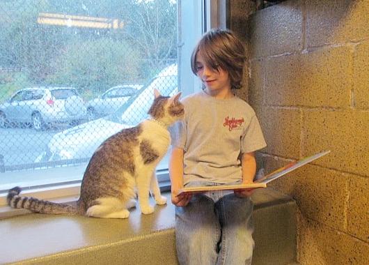 猫ちゃんに本を読み聞かせすると良い効果がある?! Book Buddies Program_b0007805_1359349.jpg