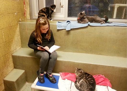 猫ちゃんに本を読み聞かせすると良い効果がある?! Book Buddies Program_b0007805_140124.jpg