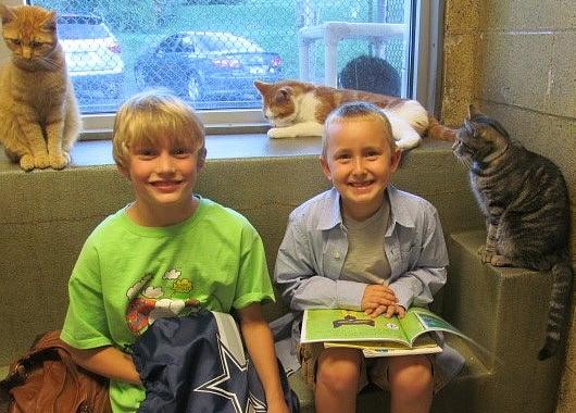 猫ちゃんに本を読み聞かせすると良い効果がある?! Book Buddies Program_b0007805_1414226.jpg