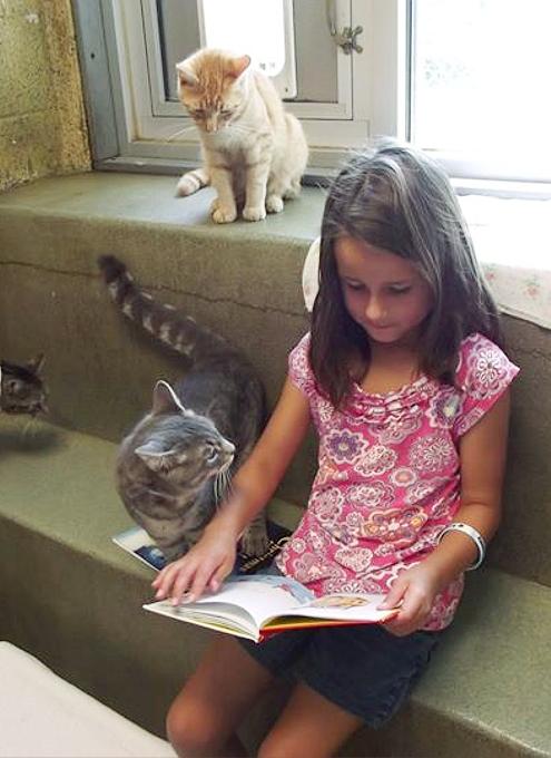 猫ちゃんに本を読み聞かせすると良い効果がある?! Book Buddies Program_b0007805_1433981.jpg