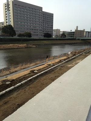 ♪ 熊本城マラソン2014 サイドストーリー ♪_b0228113_18080415.jpg