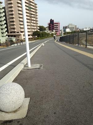 ♪ 熊本城マラソン2014 サイドストーリー ♪_b0228113_18185840.jpg